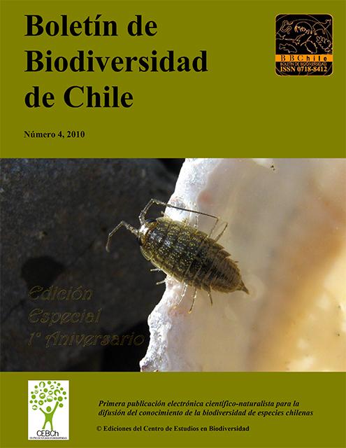 portada 2010-4