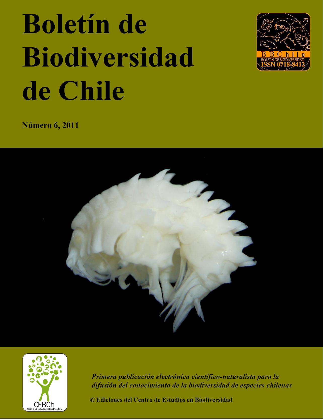 portada 2012-6