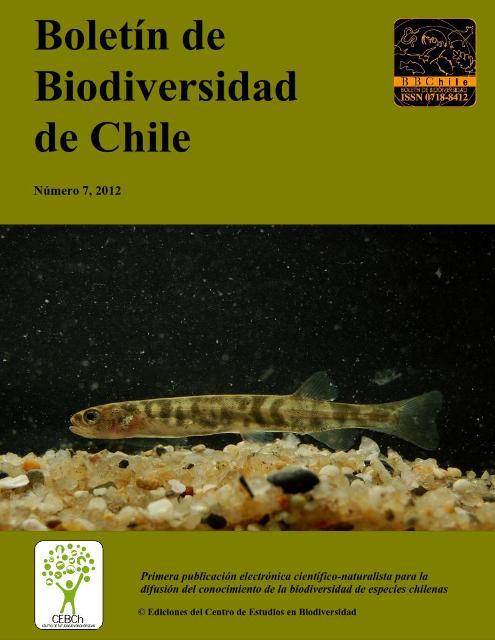 portada 2012-7